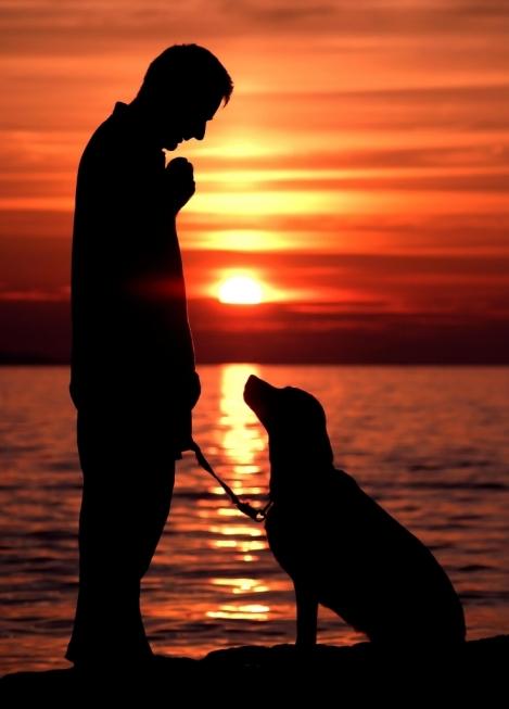 hombre-y-perro-en-playa